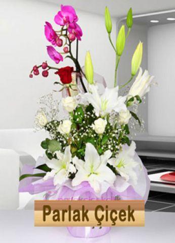 İstoç Çiçekçi Pembe Orkide Beyaz Çiçek Arajman